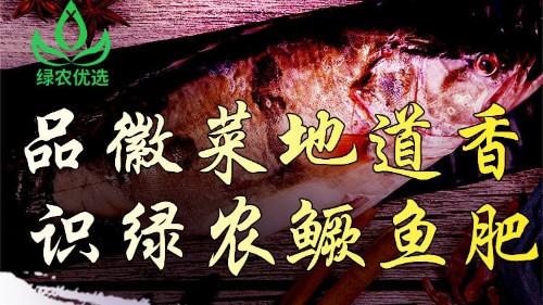 【10.24直播预告】安徽臭鳜鱼直播盛宴-品徽菜地道香 识绿农鳜鱼肥