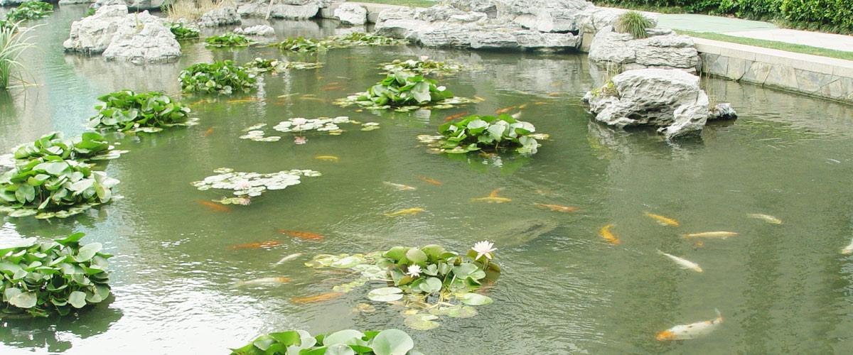 水环境工程